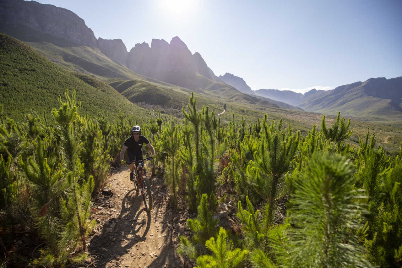 Jonkershoek, Stellenbosch - 20 November - Commencal MetaPower 29 during a Bike Network photoshoot with Myles Kelsey. Photo by Gary Perkin