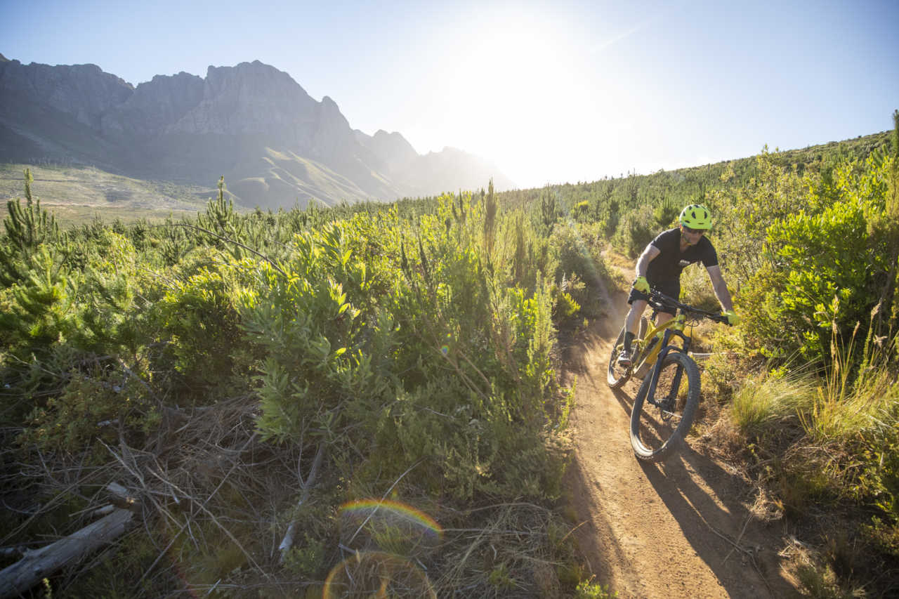 Myles Kelsey from Bike Network in Jonkershoek Stellenbosch riding a mountain bike as a form of social distancing during the covid-19 pandemic.