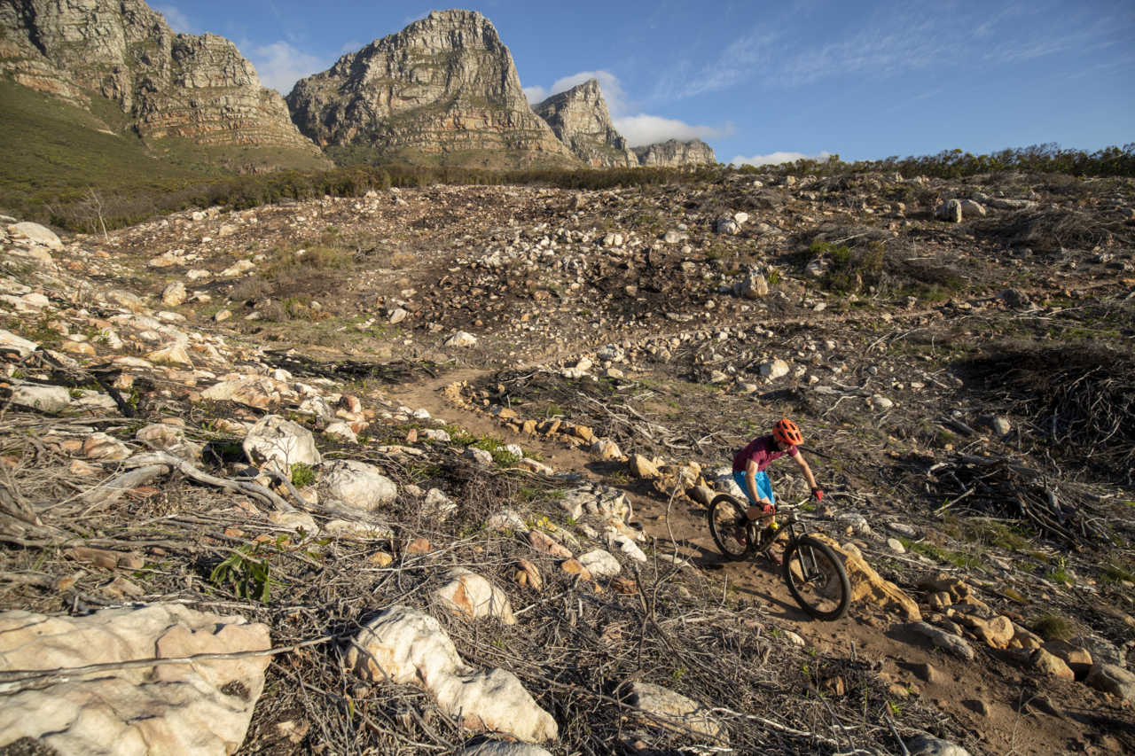 CAPE TOWN - 24 August 2020 - on the Missing Link trail below the 12 Apostles in Cape Town. Photo by Gary Perkin